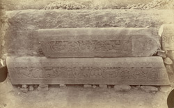 Sculpture pieces excavated from the Stupa at Bharhut: lengths of coping from the south-east quadrant 10031497